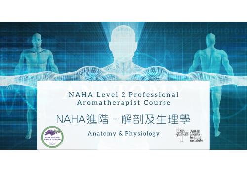 Naha 2 解剖及生理學